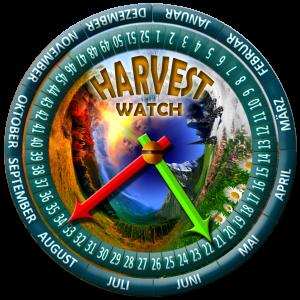 harvest-new03-RASPBERRY